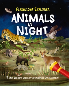 Flashlight Explorers: Animals at Night, by Lisa Regan.