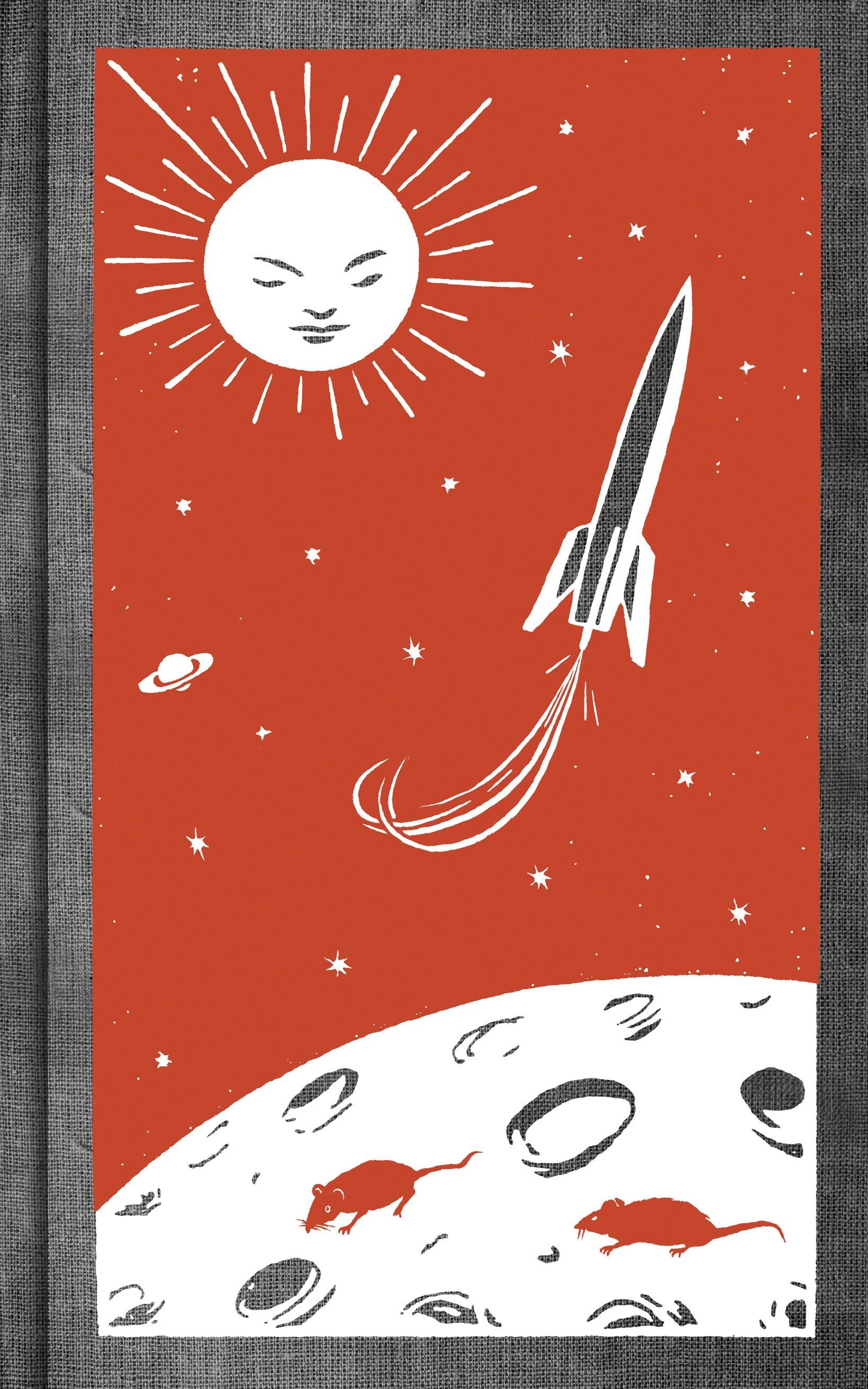 Maggot Moon Special Edition by Sally Gardner