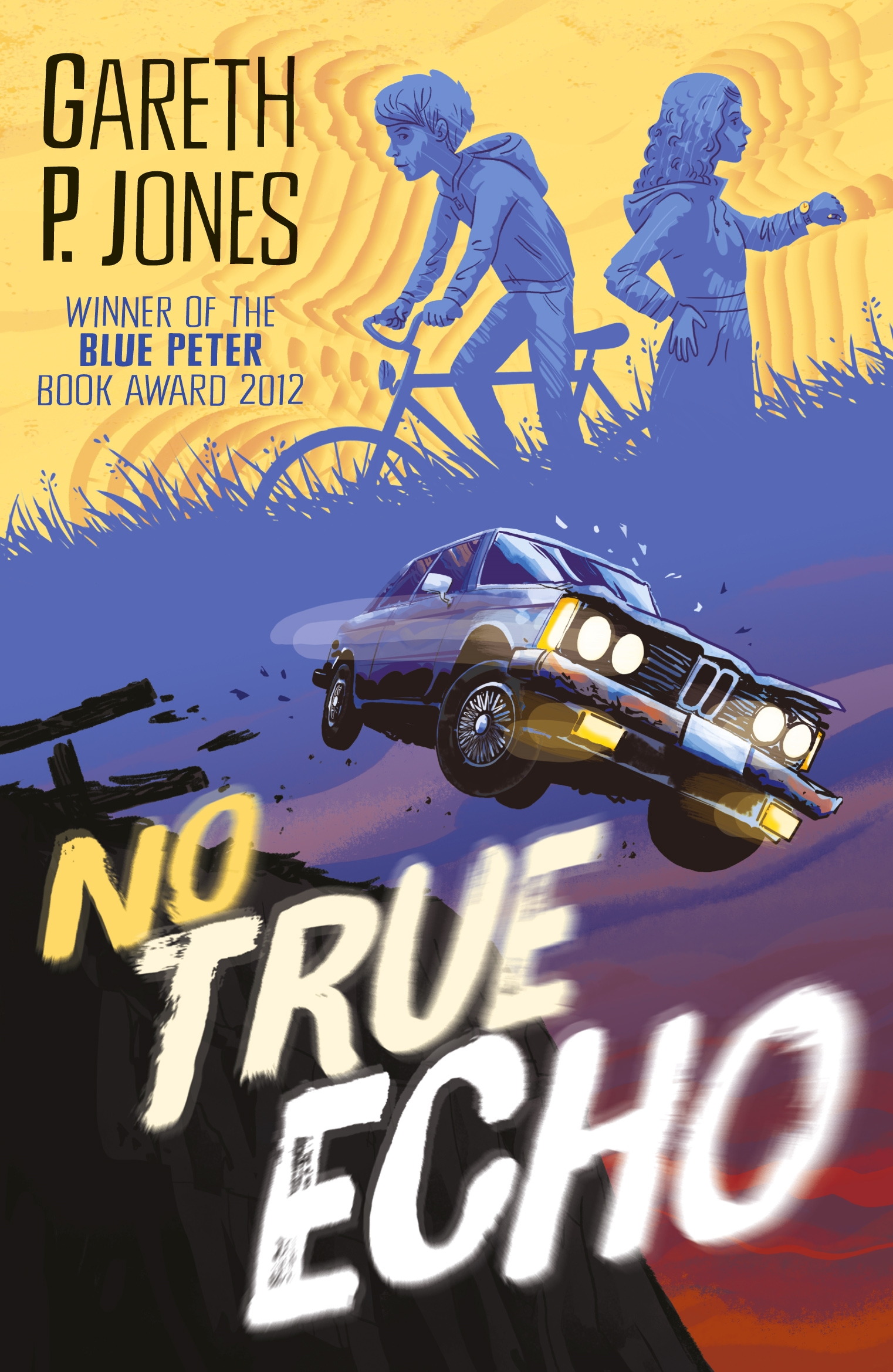 No True Echo by Gareth P. Jones