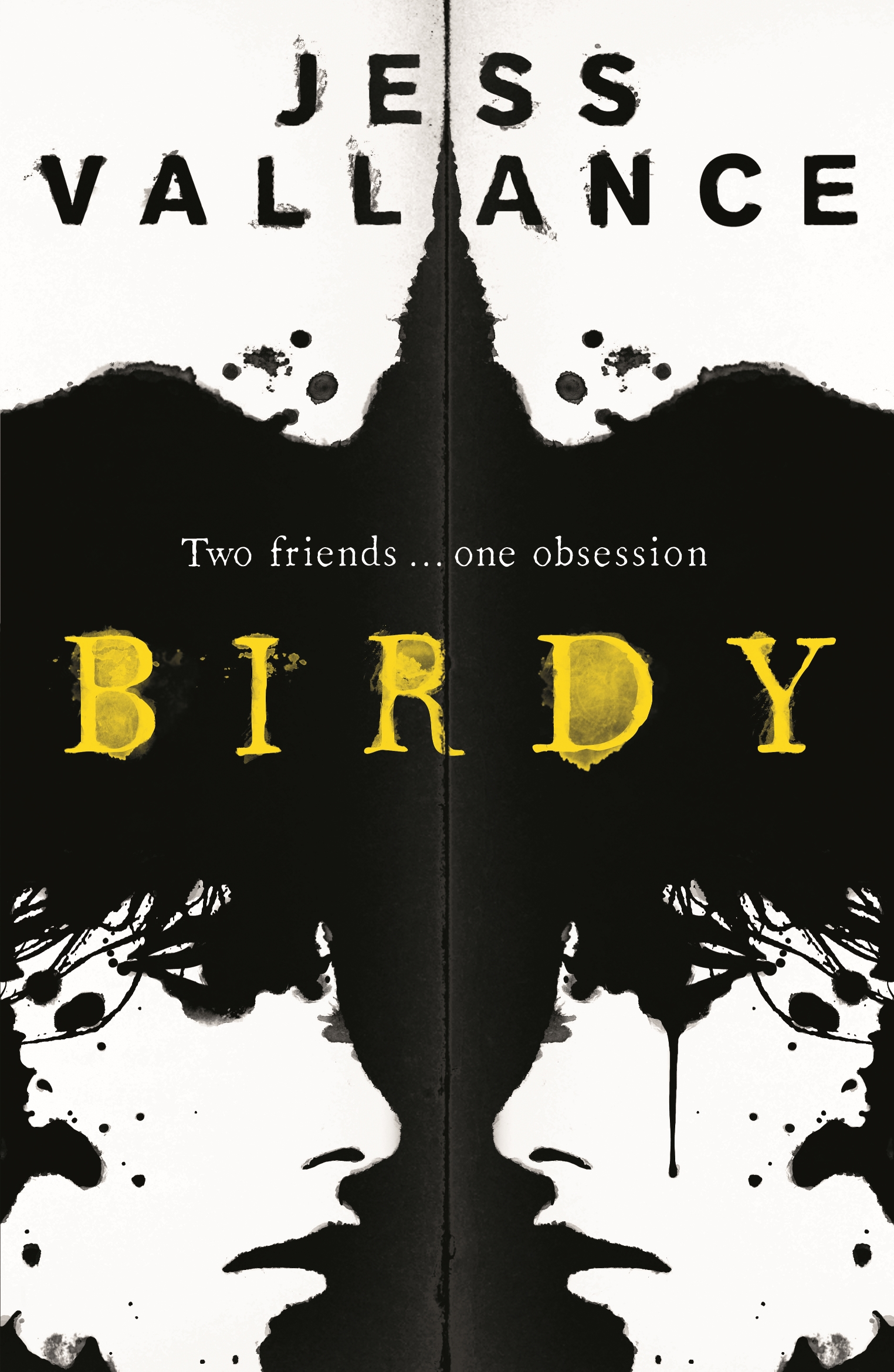 Birdy by Jess Vallance