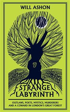 Image of Strange Labyrinth