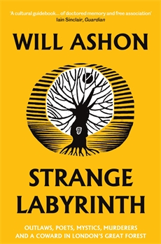 Image of Strange Labyrinth