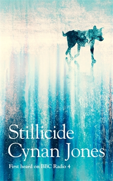 Image of Stillicide
