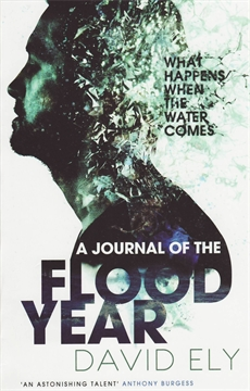 Image of A Journal Of The Flood Year