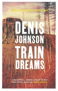 Image of Train Dreams
