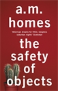 Image of The Safety Of Objects