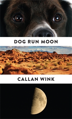 Image of Dog Run Moon
