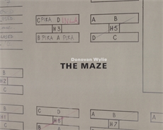 Image of The Maze