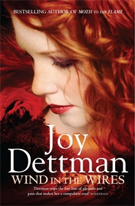 Joy Dettman: Wind in the Wires: A Woody Creek Novel 4
