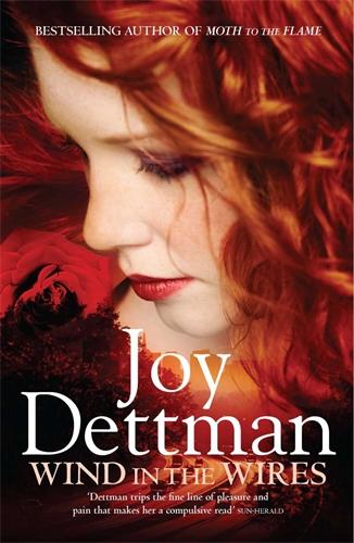 Joy Dettman: Wind in the Wires: A Woody Creek Novel 4
