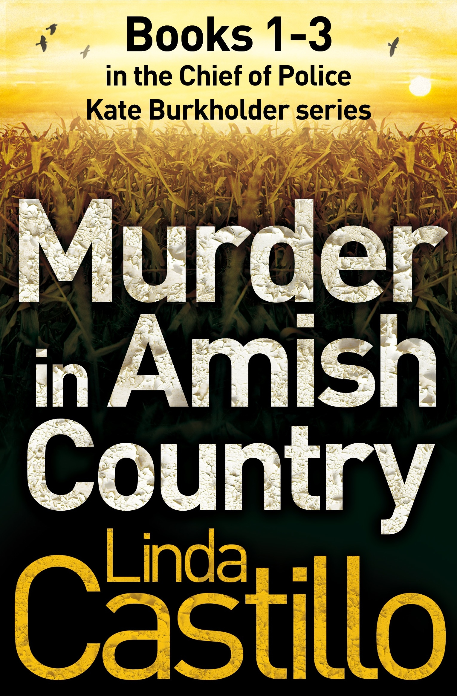 Murder In Amish Country: Kate Burkholder Books 13