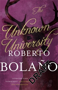 Roberto Bolaño: The Unknown University