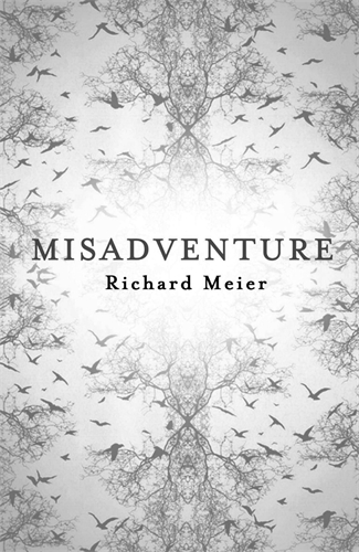 Richard Meier: Misadventure