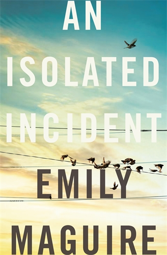 Image result for isolated incident book