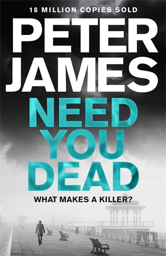 Need You Dead: A Roy Grace Novel 13