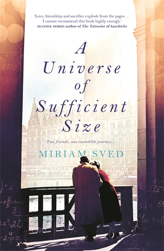 Miriam Sved: A Universe of Sufficient Size
