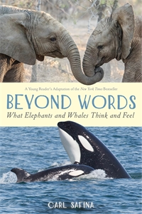 Carl Safina: Beyond Words: What Elephants and Whales Think and Feel