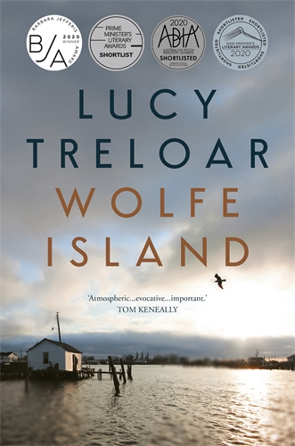 Image result for Wolfe Island book cover