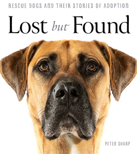 Peter Sharp: Lost But Found