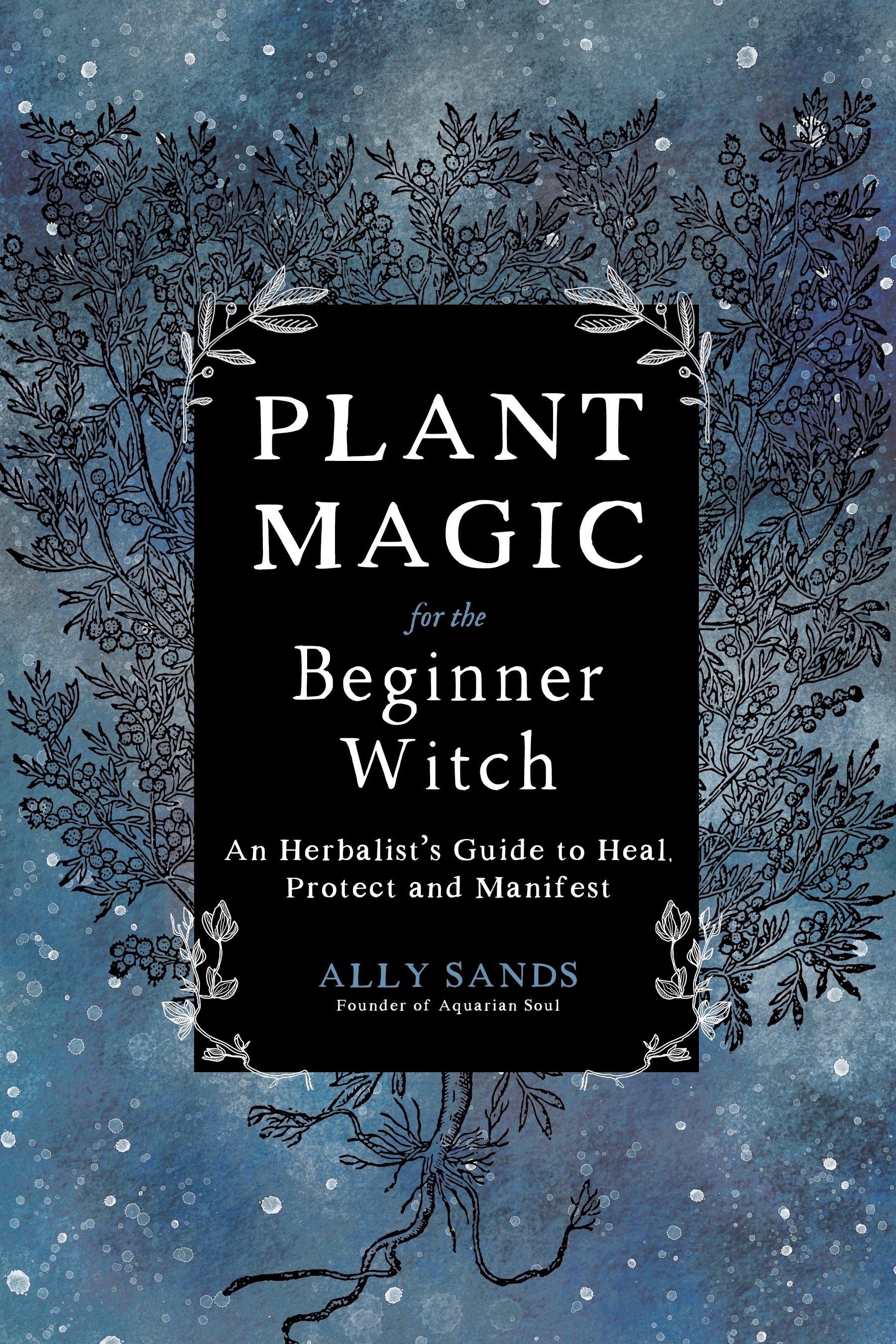 Plant Magic for the Beginner Witch   Pan Macmillan AU