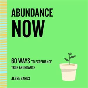 Jesse Sands: Abundance Now