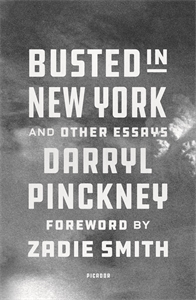 Darryl Pinckney: Busted in New York and Other Essays