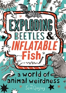 Tracey Turner: Exploding Beetles and Inflatable Fish