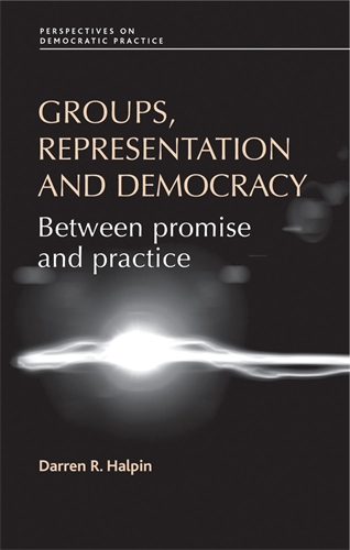Groups, representation and democracy